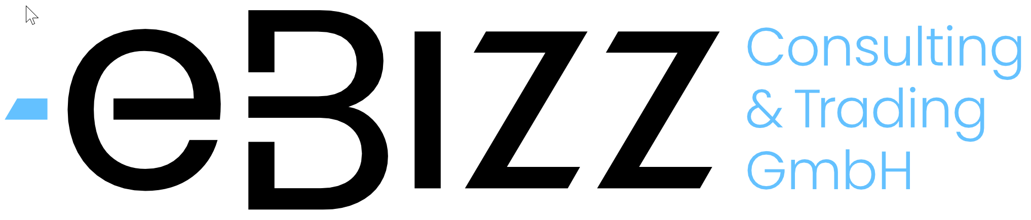eBizz Consulting and Trading GmbH